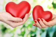 الحياة العاطفية (2): ما هو الحب